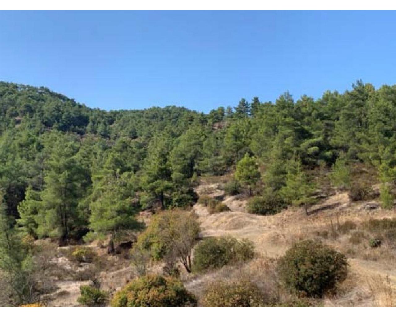 Land Nicosia(Palaichori)  1673 SqMt for sale