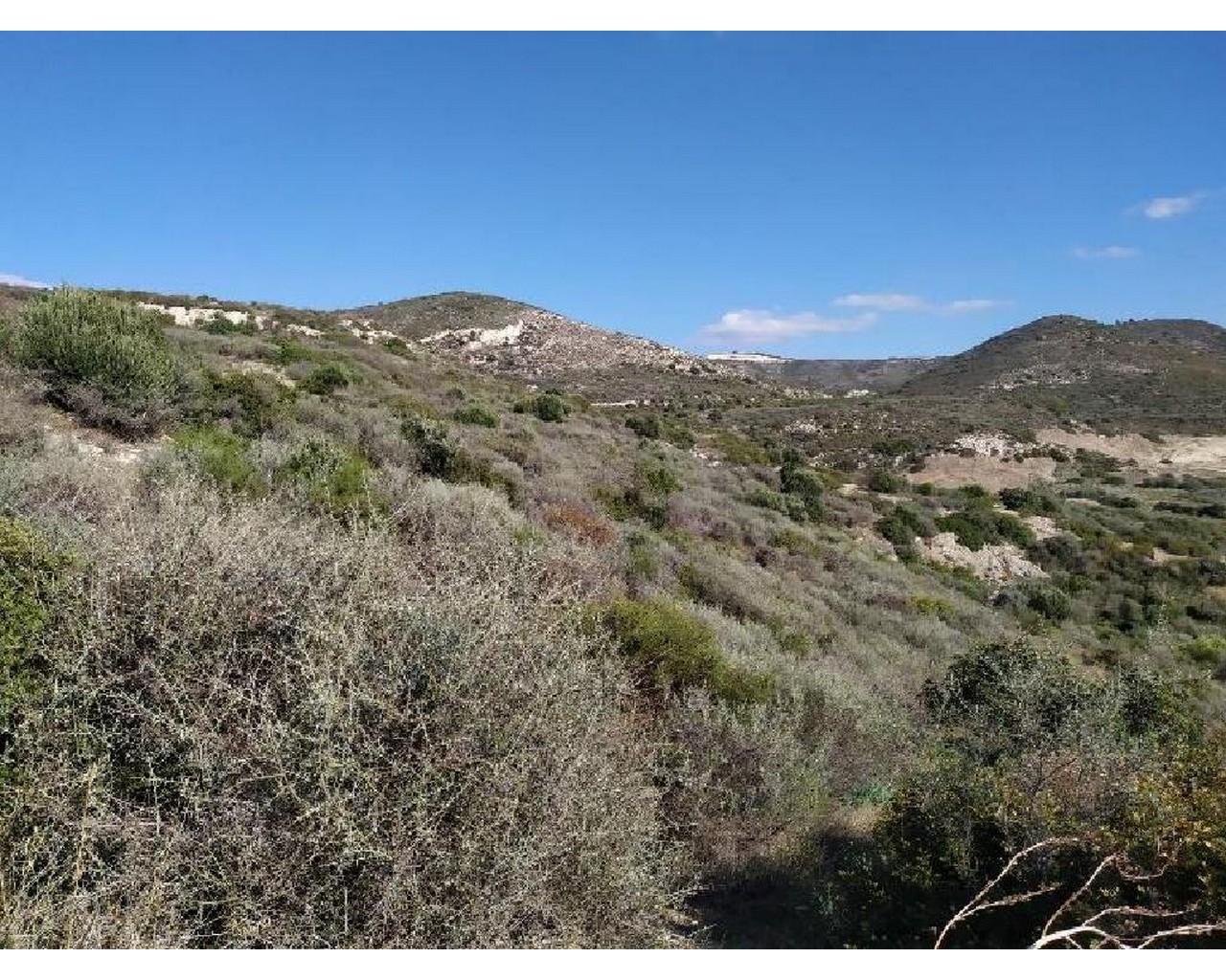 Land Larnaca(Ora)  1338 SqMt for sale