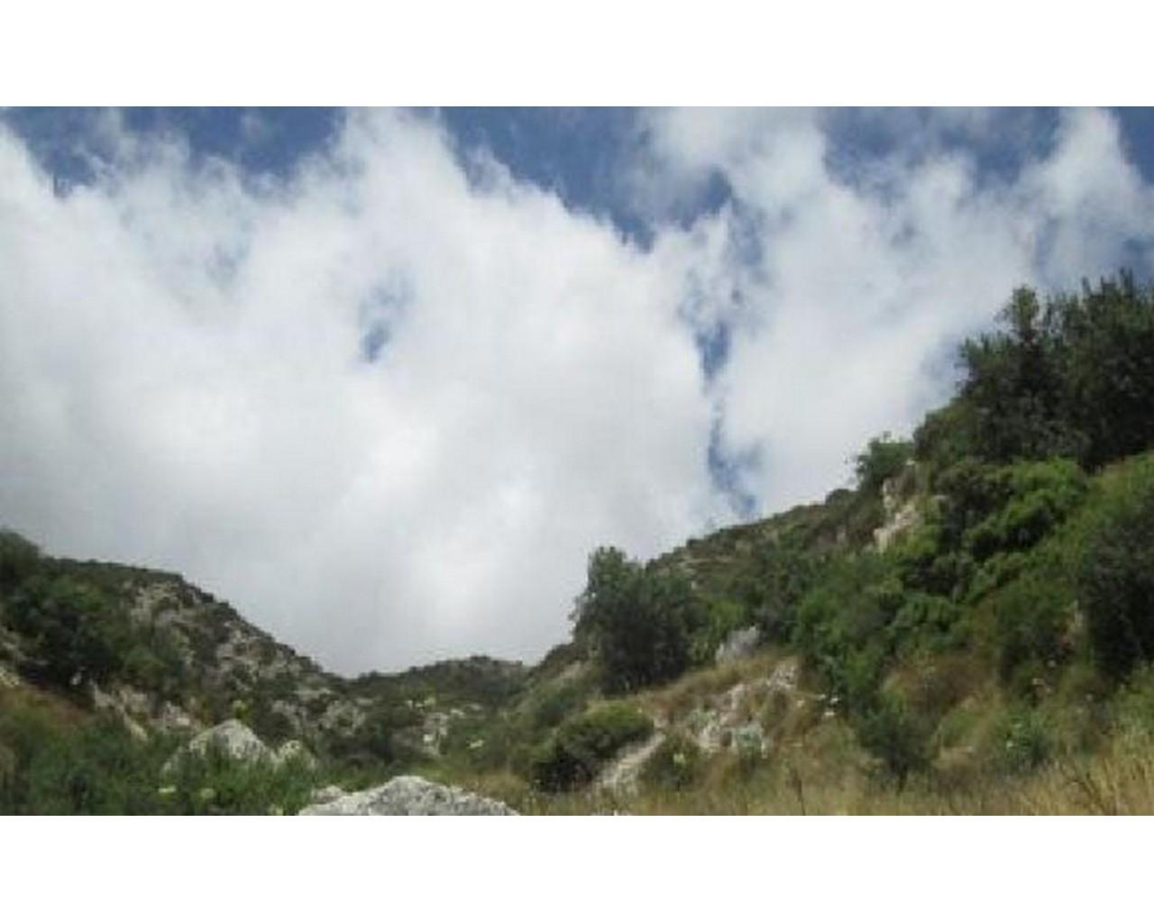 Land Paphos(Akoursos)  2007 SqMt for sale