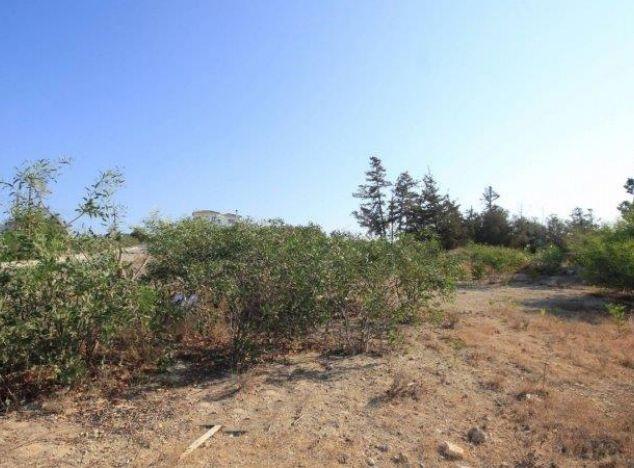 Land  Paphos, Anarita 9,000.0 SqMt for long term rent